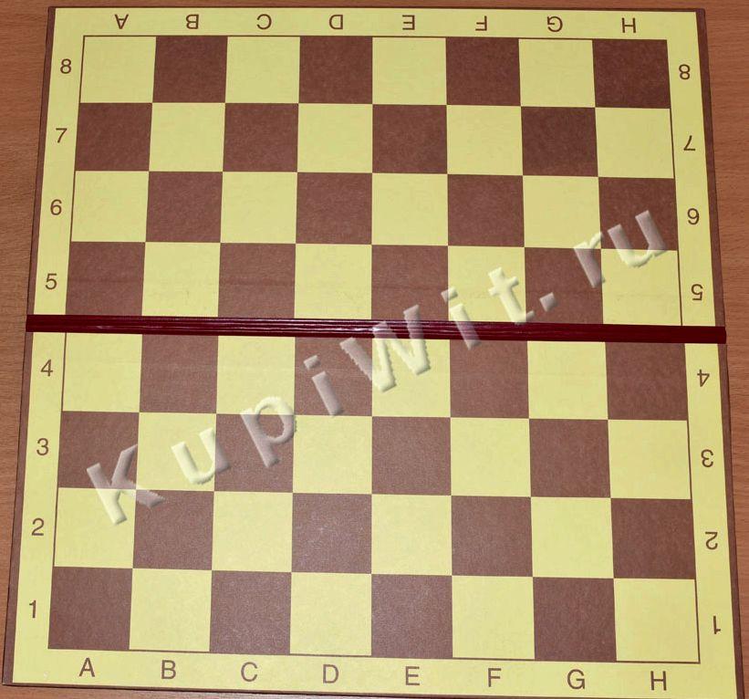 igrat-v-shashki-100-kletok_1.jpeg