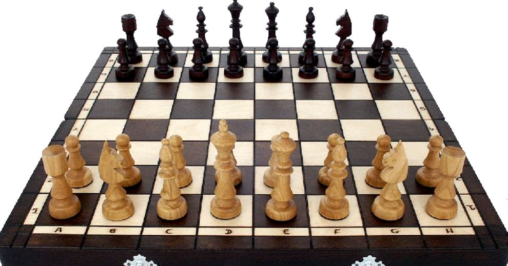 Шахматы игра с мастерами