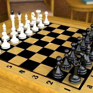 shahmaty-igrat-s-ljudmi-so-vsego-mira_1.jpg